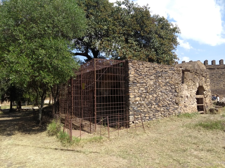 old lion cages