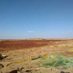 dallol Christmas colours